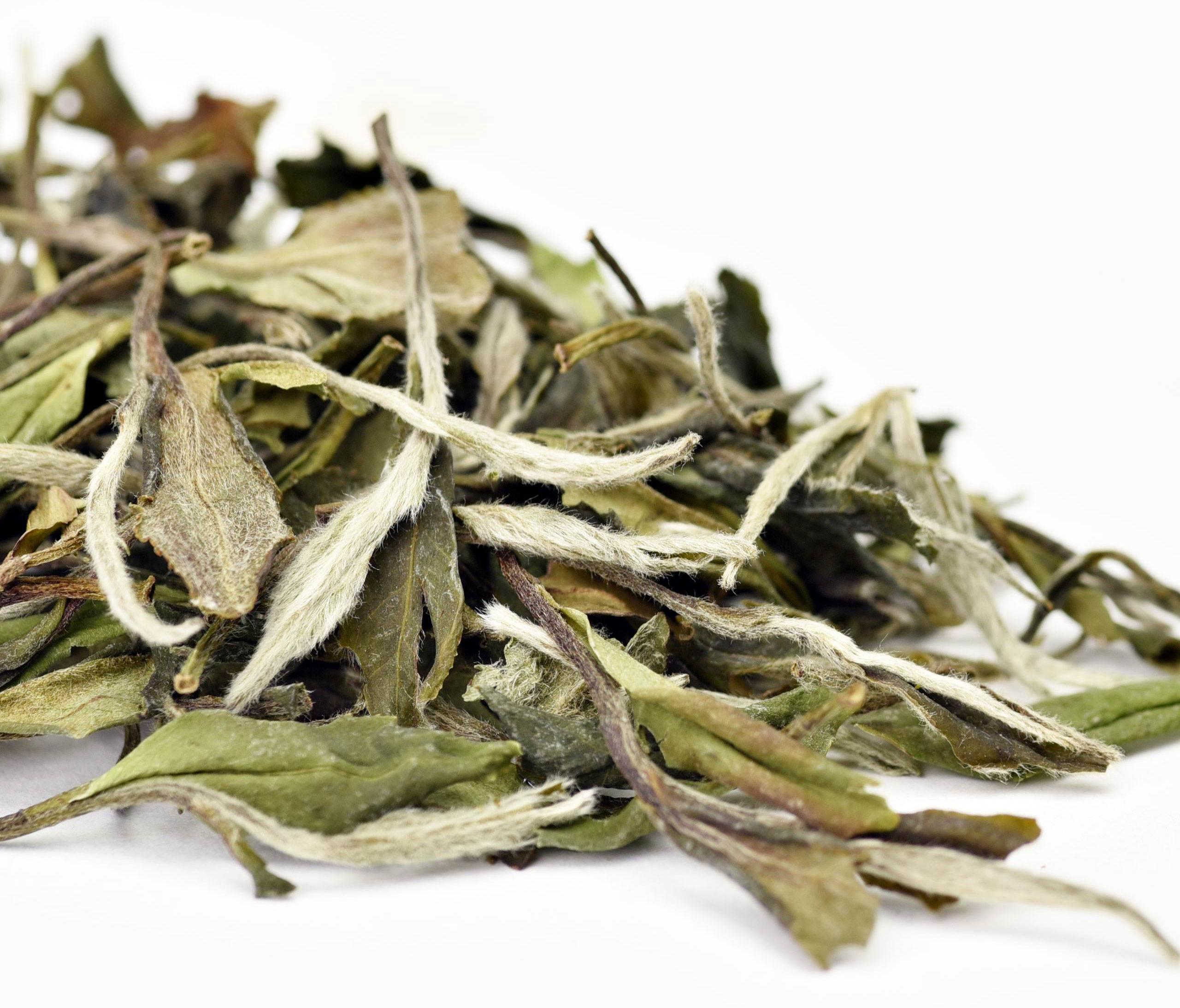 Organic White Peony Tea Pai Mu Tan With Factory Price - 4uTea   4uTea.com