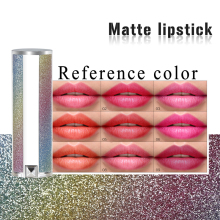 2019 Private Label Langdurige Lippen Make-Up Matte Lippenstift, Professionele Glitter Buis Lip Stick