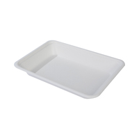 2020 new product high quality composable disposable degradable bagasse tray