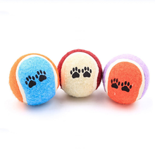 Amazon Hot Koop Pet Dog Tennis Ballen Voor Hond Launcher