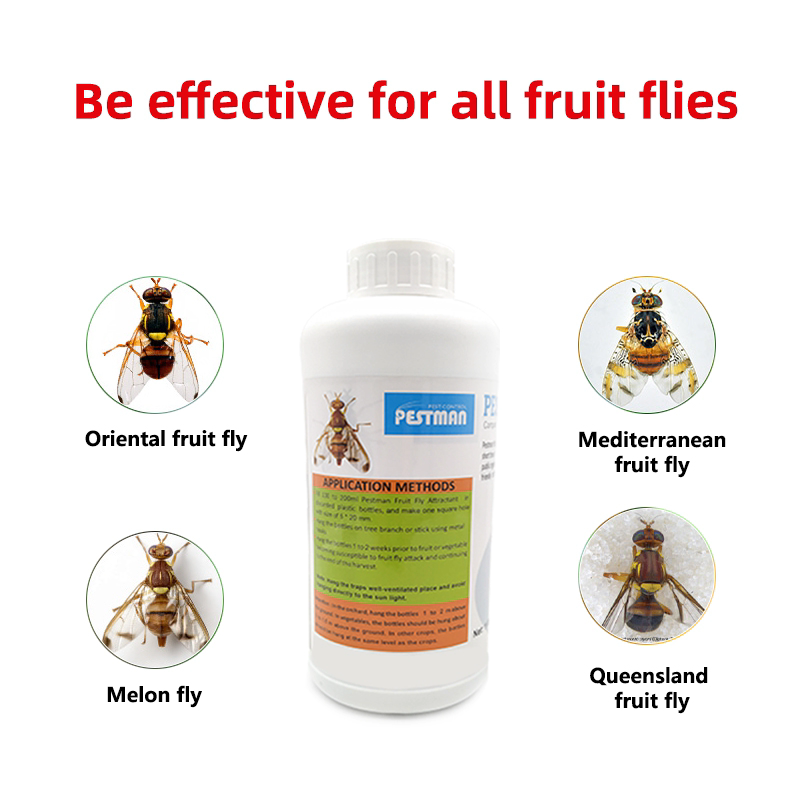 Pestman Fruit Fly  Lure Attractant Catcher Fruit Fly Traps Pheromone
