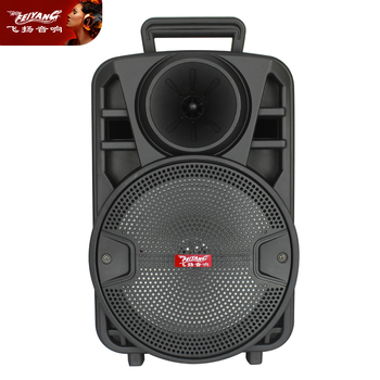 "Feiyang 8"" portable Bluetooth speaker"
