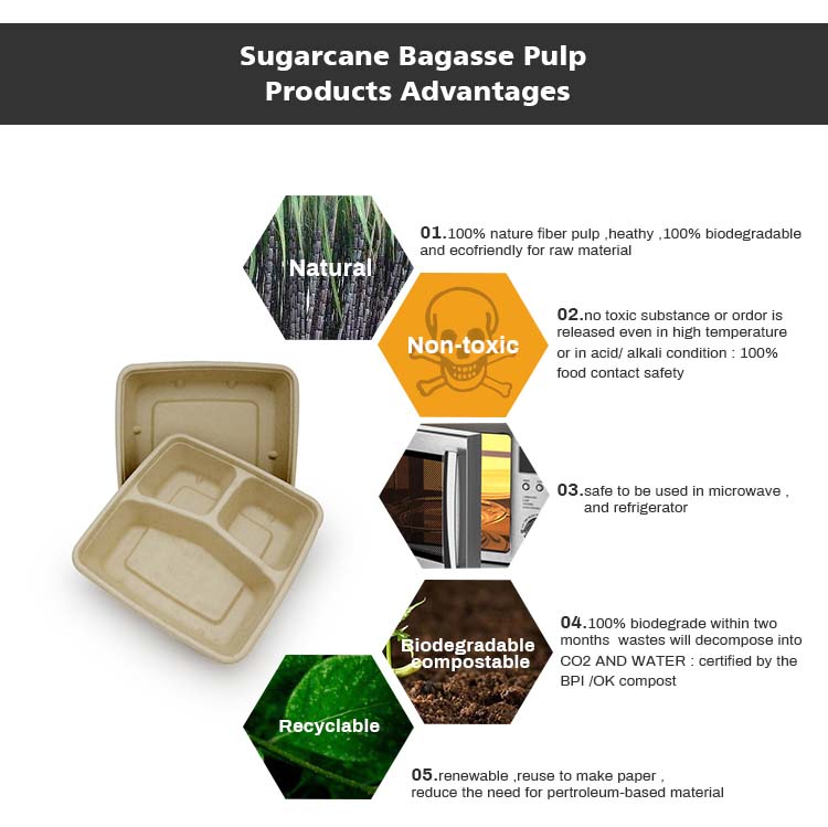 Natural Bagasse Eco Friendly Food Fiber To Go Container Compostable