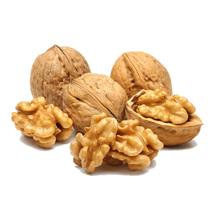 Chinese High Quality Thin Shelled Walnuts For Seller