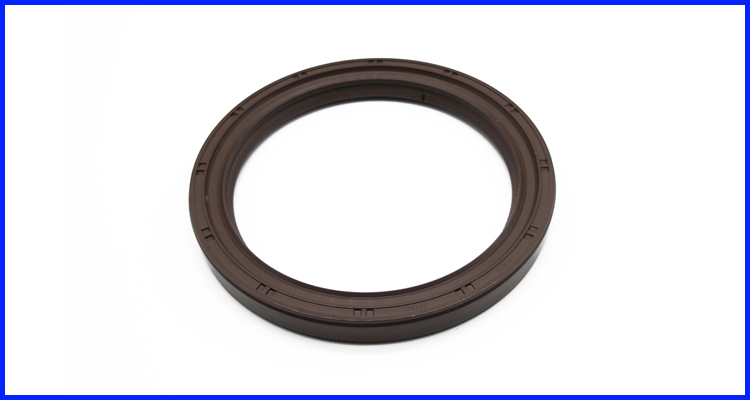 Htcl Type Oil Seal Hot Selling Made in China NBR Customized Size