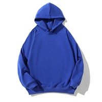 China manufacturer customized fabric type velour champion custom hoodies for motion