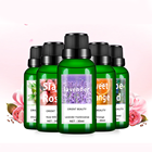 OEM/ODM ISO22716 GMPC Guangzhou Wholesale Bulk Price Nourishing Relieve Fatigue Natural Lavender/Rose Essential Oil Pure