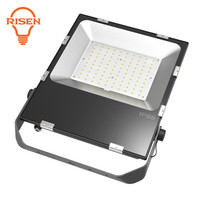100 Watt Led Flood Light Replace Halogen