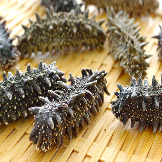 Sea Cucumber Top Quality Wholesale Dried Sea Cucumbers
