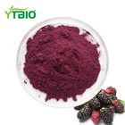 Vacuum Packed [ Natural Extract Fruit ] Fruitfruit 100% Natural Mulberry Extract Mulberry Fruit Powder