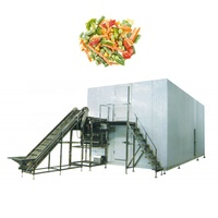 Frozen Vegetable and Fruit Food Quick Freezing Fluidized Blast Tunnel Flow Freezer IQF Machine for sale