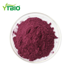 Water Soluble Freeze Dried Blueberry Ectract Powder