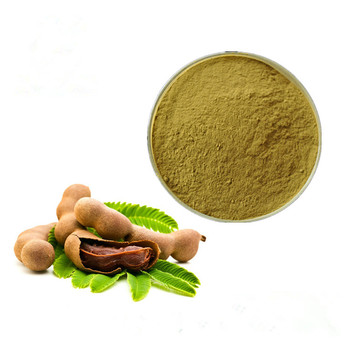 Free Sample High Quality Tamarind Seed Extract