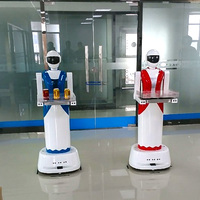 WiFi / 3G remote control Humanoid Smart Catering Services Robot