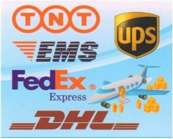 Package By cheap Air freight UPS/DHL/TNT Freight agent from China to Tirana Albania