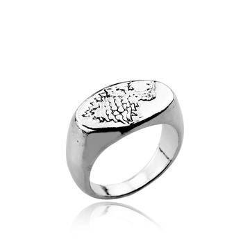 Hot Movie Game of Thrones Series Ring Song Of Ice And Fire House Stark Badge Ring Jewelry Accessories For Men Women