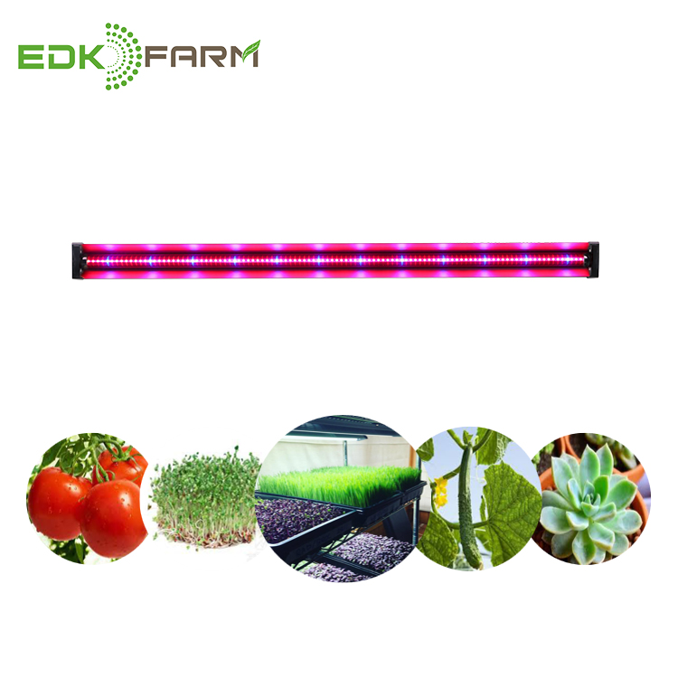Led strip grow light full spectrum for indoor plants