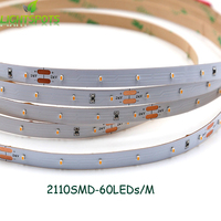 ShenZhen 14 Years Manufacturer High CRI 24V Small Size Chip 2110 SMD Strip Led Rope Light