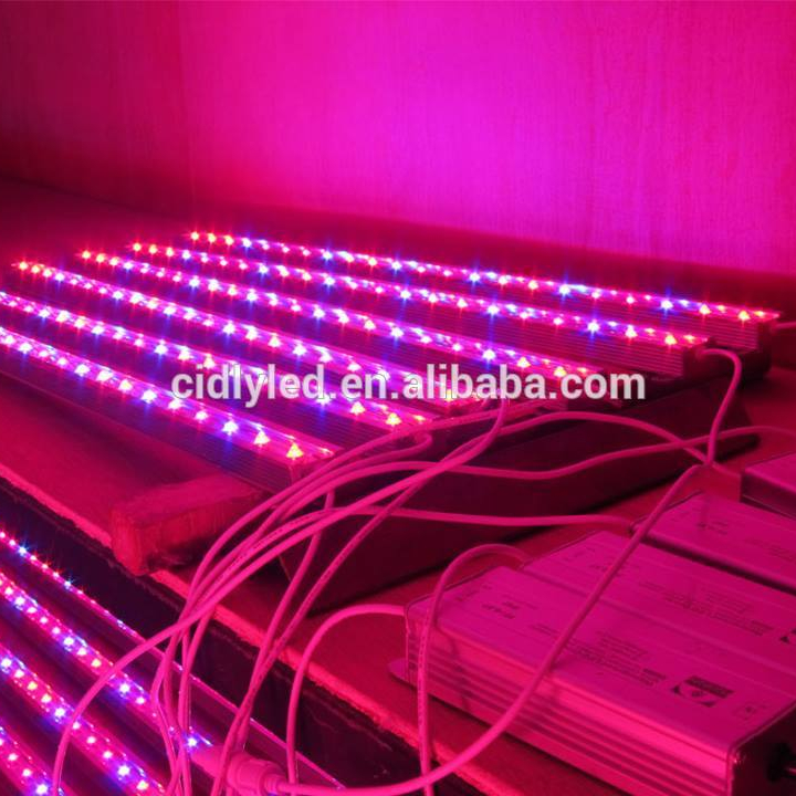 Top rated aangepaste spectrum indoor tuinbouw 2ft 3ft 4ft led grow bar strips voor verticale landbouw en cultivations