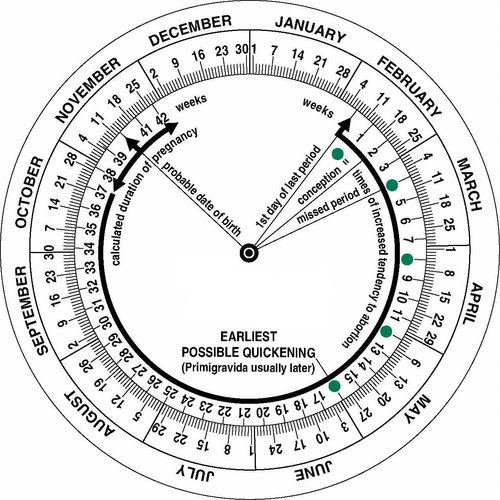 Pregnancy wheel printable