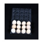 Disposable Egg Tray Egg Plastic Tray Good Quality Plastic Packaging Deviled 12 Storage Box Disposable Egg Tray For Sale