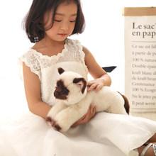 Милые мягкие плюшевые игрушки животных для детей, мягкие плюшевые подушки для девочек на день рождения, игрушки для девочек, Kawaii, декор для к...(Китай)