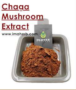 Reliable Quality Cordyceps Lingzhi Extract For Capsule