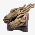 Hot Selling Dang Gui Root /Dong Quai Root Extract/Angelica Sinensis