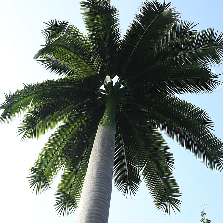 Anti-Freeze Anti-Ultraviolet Artificial Coconut Leaves Artificial Palm Tree Leaves For Decoration