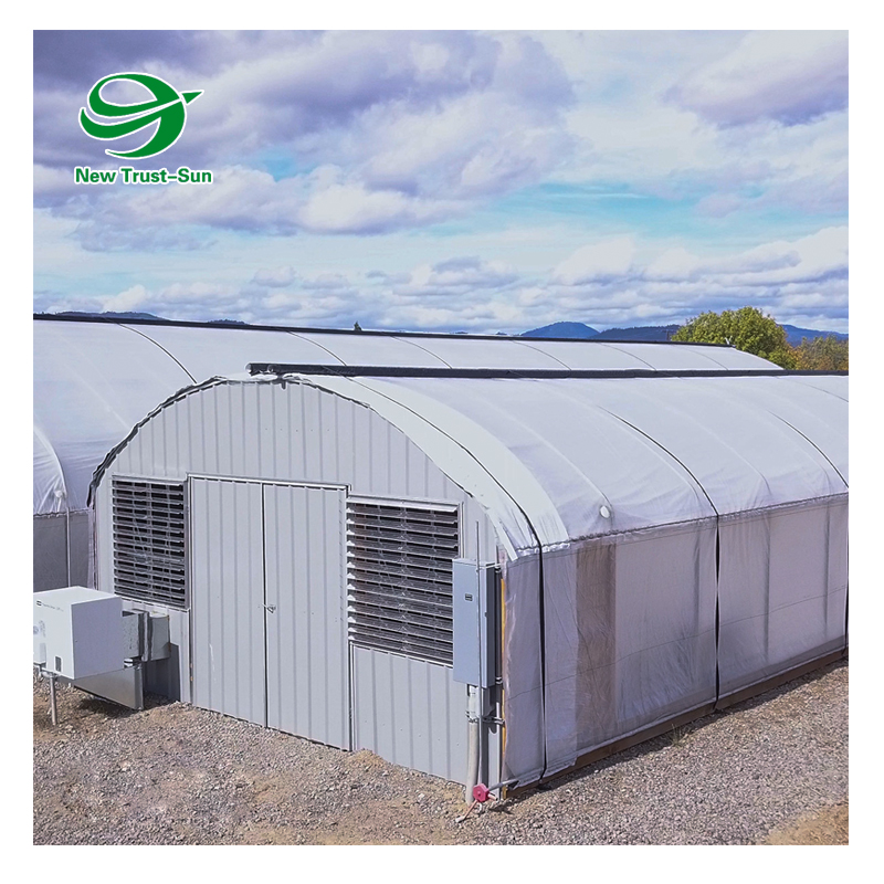 High quality commercial Hemp automated light dep deprivation blackout greenhouse
