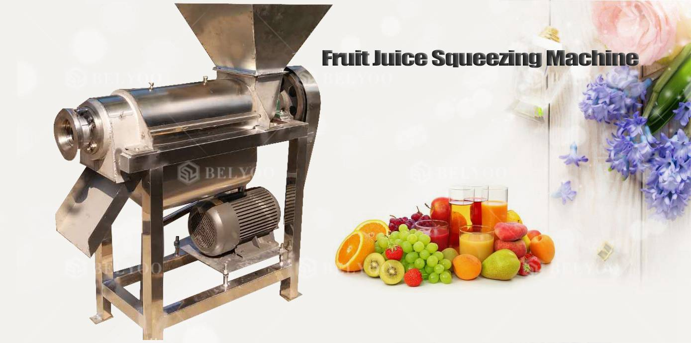 Pineapple Lime Fruit Ginger Commercial Juice Extractor Carrot Machine Industrial Electric Juicer Orange