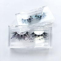 Wholesale custom logo acrylic eyelash plastic case packaging