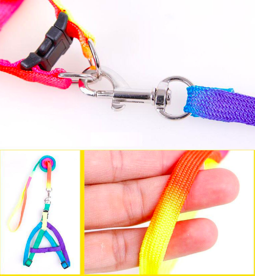 Hot Sale Rainbow Dog Harness And Leash Set For Small Pet Cat Puppy