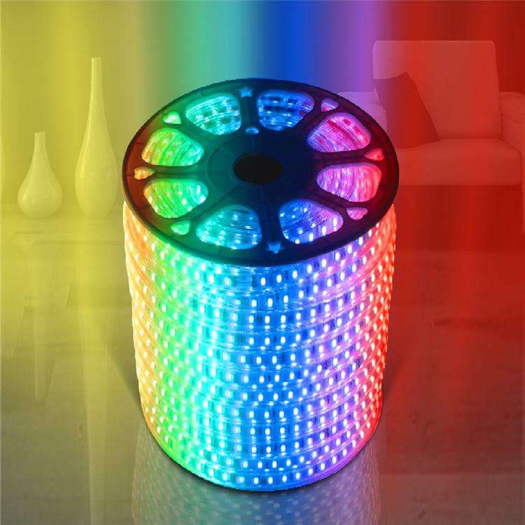 Online shopping Christmas ip65 waterproof RGB SMD 5050 flex flexible 220V 120V led strip lights