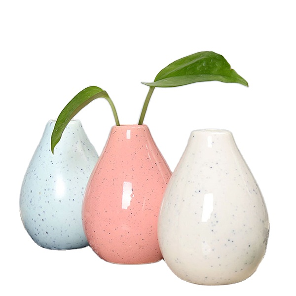 Small Vase For Hydroponics Of Green Plant Suitable for Home