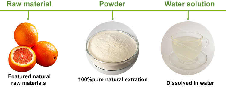Factory supply instant organic Grapefruit flavor concentrate extract powder