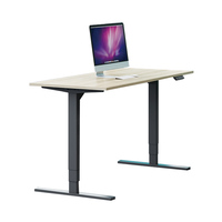 2020 New Design Stand Up Desk Modern Ergonomic Office Standing Computer Desk