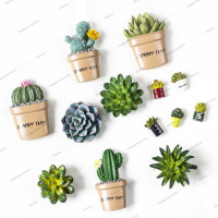 Custom 3d succulent fridge magnet customized flower refrigerator magnet for fridge