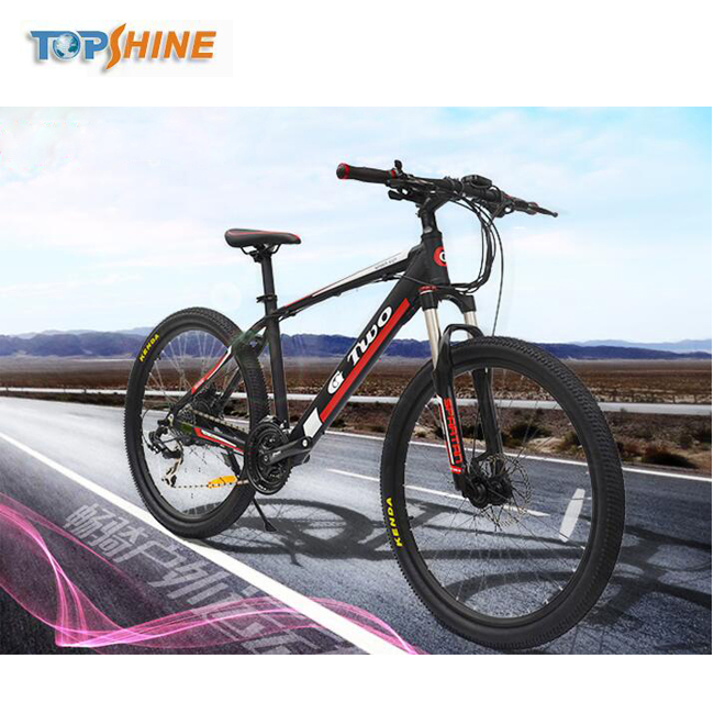 26inch 350W GPS Locating Mountain Electric Bike with Diagnostic Data speedodemeter