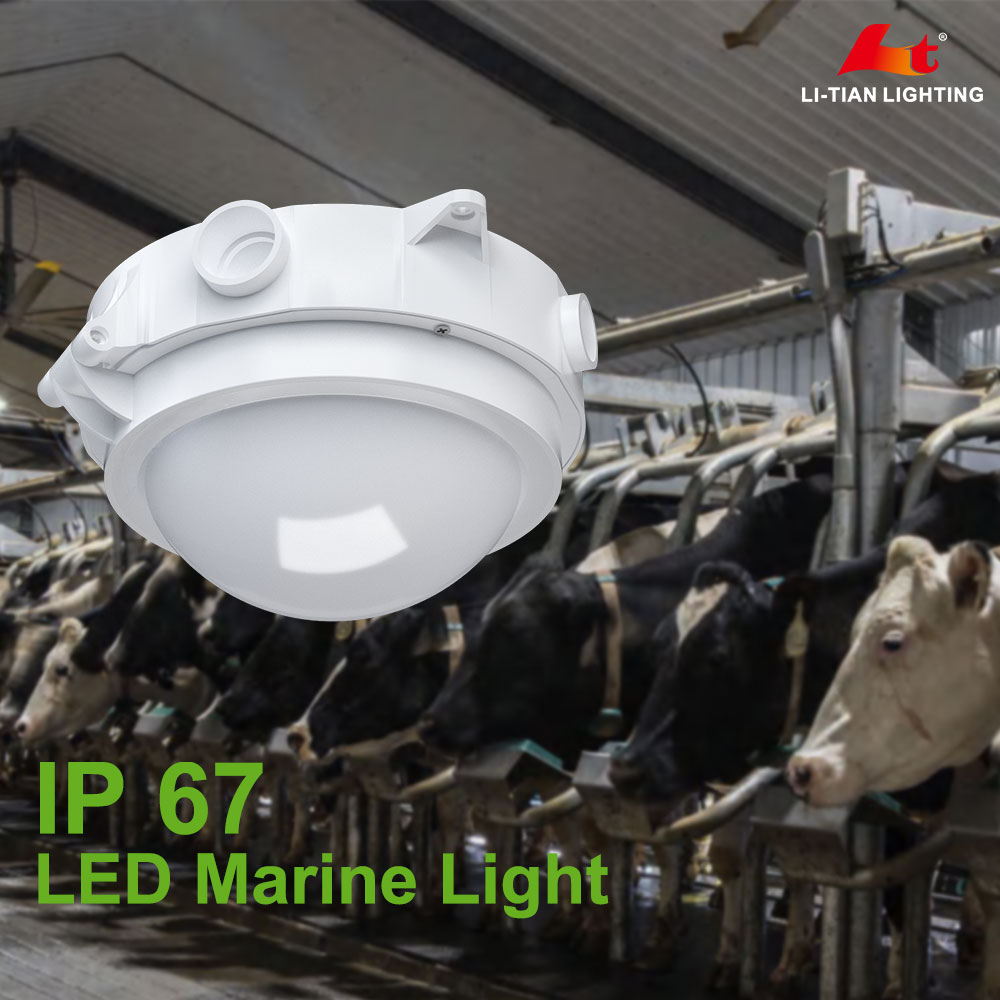 30w chemical plant airport station vapor-tight fixture light led ip67 tri-proof