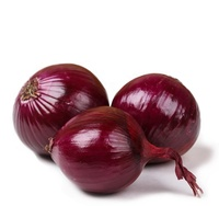 high quality China fresh red onion price