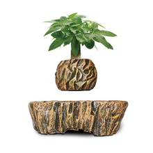 HCNT air bonsai Levitation bonsai pot Desktop decoration gift