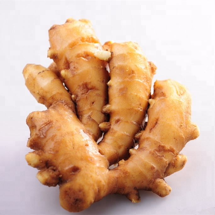 High Quality Pure Natural Plant Oil Food Grade Ginger Oil