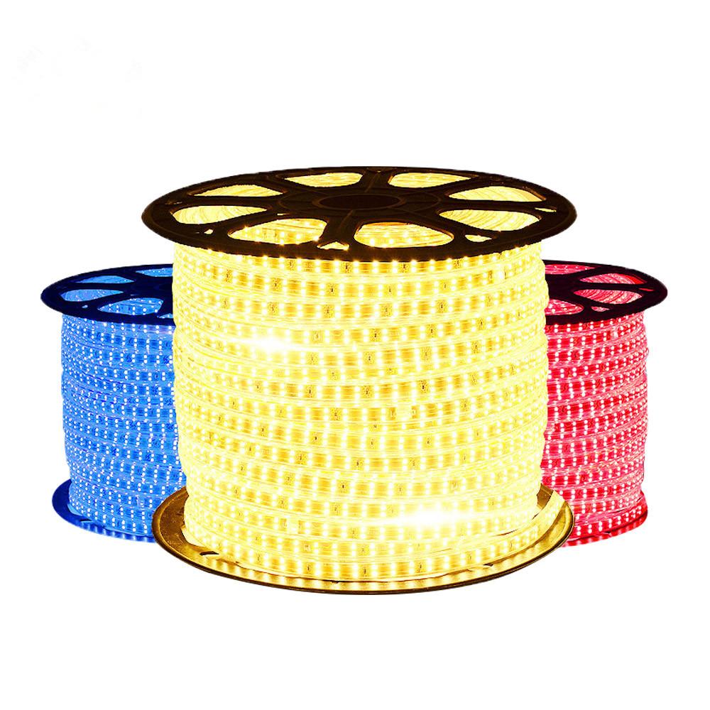 110V 5050 50m 100m roll IP67 Waterproof RGB Dual Color LED Strip Rope lighting