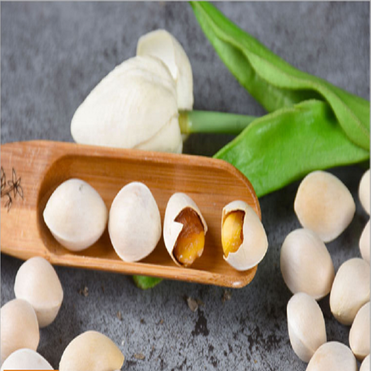 2011 Bai Guo Wholesale Best Quality Ginkgo Nuts