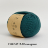 LYW-16011-02 evergreen