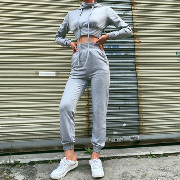 2019 High Waist Autumn Gray Elastic Waist Outwear Tracksuits Women Hoodies with Hood Sets