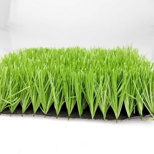 school sports <strong>lawn</strong> playing ground artificial grass football soccer field <strong>synthetic</strong> <strong>turf</strong>