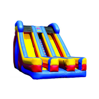 Wholesale Prices Outdoor Large Inflatable Water Dry Slide Inflatable Slide Commercial For Adult And Kids