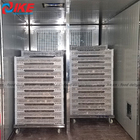 cabinet industrial herb fruit dryer with drying trays